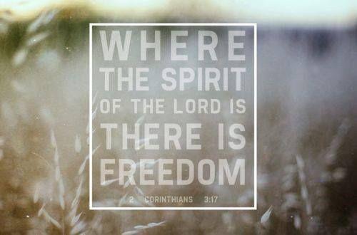 Peace + Freedom